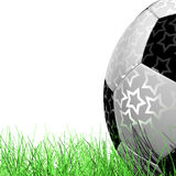 Leather Soccer Ball on Grassl  a white background 3D illustration. Soccer Ball on Grass on a white background 3D illustration Royalty Free Stock Images