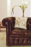 Leather sofa. With cushion, interiors Stock Photos