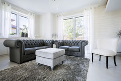 Leather sofa in bright living room Royalty Free Stock Photos