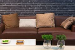 Leather sofa and cushions Stock Images