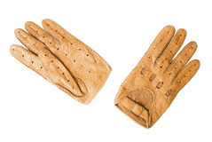 Leather sports gloves | Isolated Stock Image