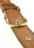 Leather strap Stock Photos