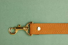 Leather strap with carabiner Stock Photos