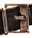 Leather straps. Stock Photo