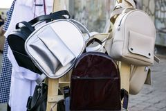 Backpacks for girls. Leather stylish backpacks for girls Royalty Free Stock Photos