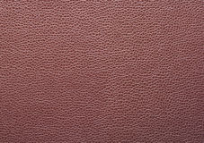 Leather surface Stock Images