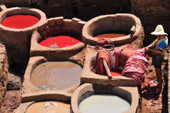 Leather tannery in Fez in Morocco Stock Images