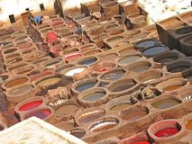 Leather tanning in Fez, Morocco. Men at work royalty free stock photos