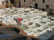 Leather tanning in Fez, Morocco. Men at work royalty free stock photography
