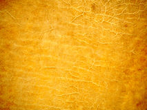 Leather Texture 1 Stock Photography
