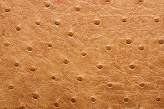 Leather Texture. Leather closed-up image can be used as texture background stock image