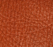 Leather texture. A fine red leather texture Royalty Free Stock Photos