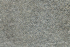Leather texture. Silver leather texture for design Stock Photos