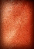 Leather texture. Closeup of leather texture Royalty Free Stock Photos