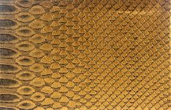 Leather texture Royalty Free Stock Photo