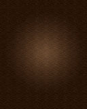 Leather Texture royalty free illustration