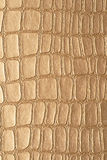 Leather texture. Crocodile leather texture to serve as background Stock Photo