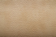 Free Leather Texture Royalty Free Stock Photo - 9579165