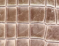 Leather texture abstact and background Stock Images
