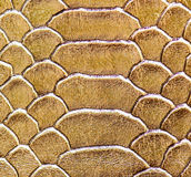 Leather texture abstact and background Royalty Free Stock Photo