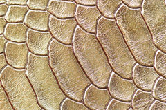 Leather texture abstact and background Royalty Free Stock Photos
