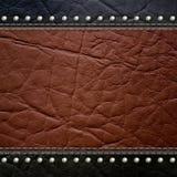 Leather texture background stock photos