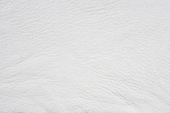 Leather texture background Stock Image