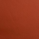 Leather texture for background Stock Image