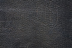 Leather texture closeup Royalty Free Stock Photo