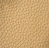 Leather texture, closeup Stock Image