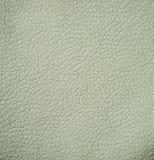 Leather texture, closeup Stock Photography