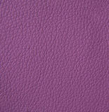 Leather texture, closeup Royalty Free Stock Images