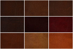 Leather texture set in several shades of Brown Stock Photo