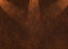 Leather texture shined with beams Royalty Free Stock Photo