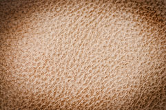 Leather texture up close Stock Image
