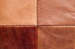 Leather texture up close Stock Images