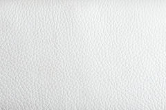 Leather texture. White leather texture for background stock photography