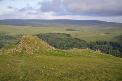 Leather Tor, Dartmoor Stock Photography