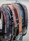 Leather trouser belts Stock Images