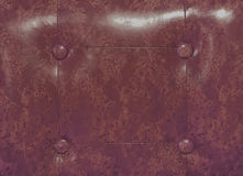 Leather upholstery Stock Image