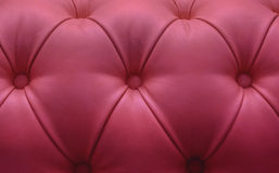 Leather upholstery of a magnificent sofa Stock Photography