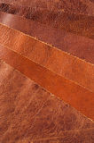 leather upholstery samples Royalty Free Stock Photos