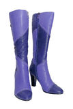 Leather violet female boots Stock Image