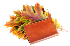 Leather wallet with autumn maple leaves Stock Photo
