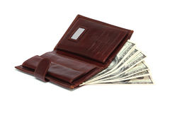 Leather wallet and dollar bills Stock Image