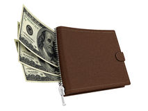 Leather wallet with dollars Stock Images