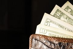 Leather wallet with money. Royalty Free Stock Photos