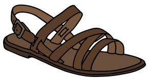 Leather woman's sandal Royalty Free Stock Image