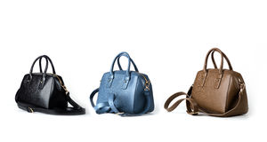 Leather women handbags isolated on white background Stock Image