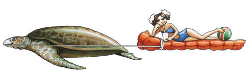 Leatherback Sea Turtle Royalty Free Stock Photo